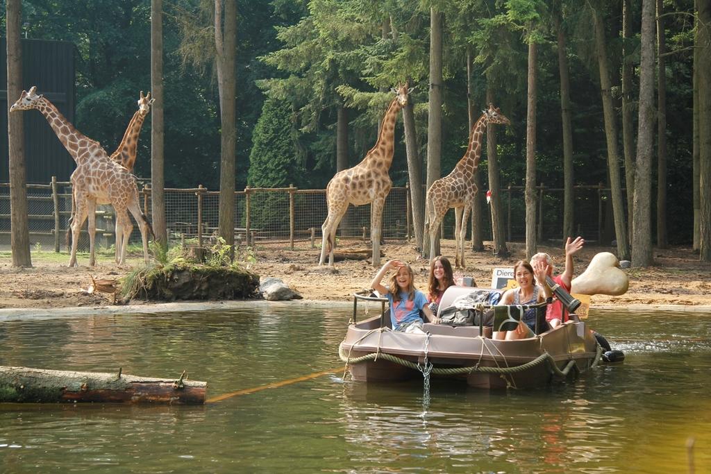 Amersfoort zoo - 30 min by car