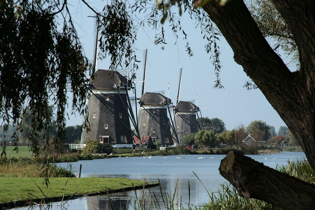 Three windmills nearby us