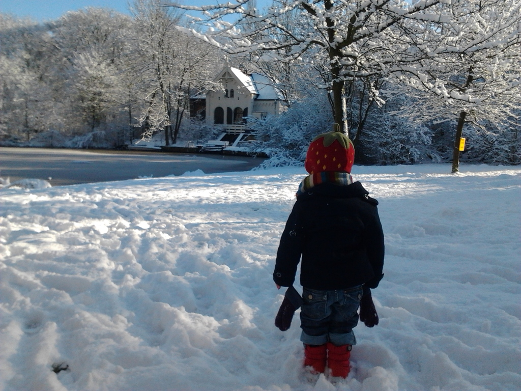 Nearby Flevopark in winter