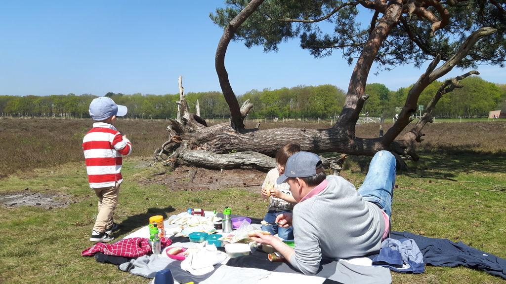 Lovely sunday picknick on the 'hei', nature area, 5 mns from our home