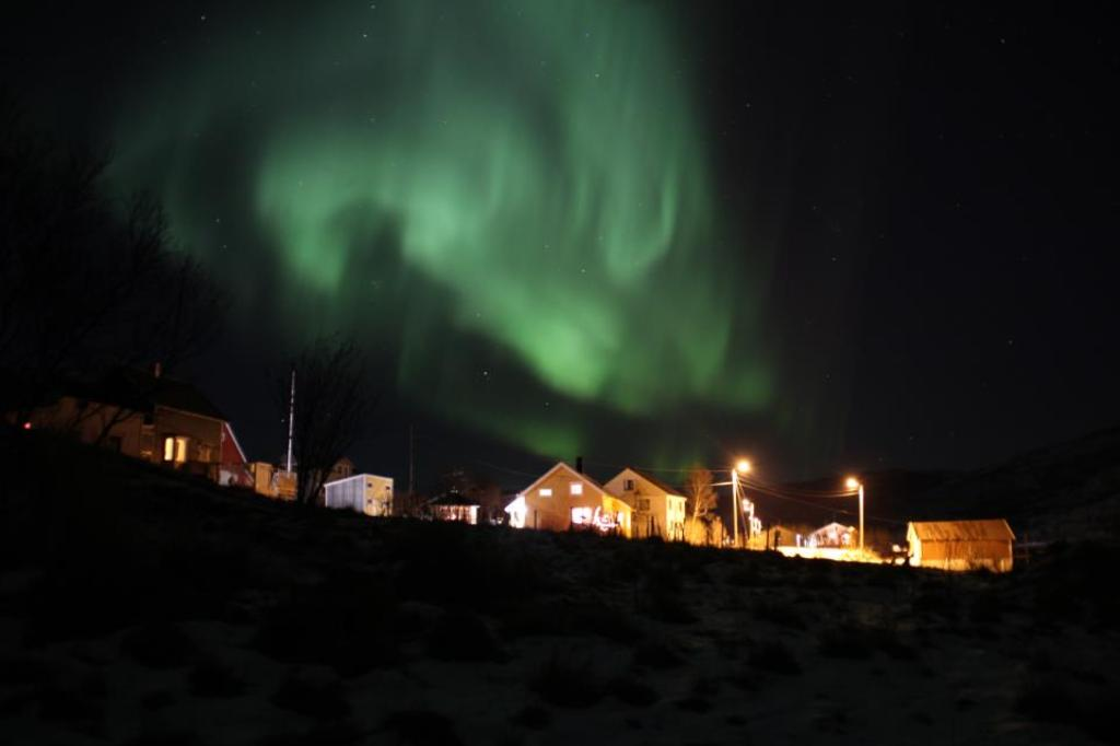 Aurora Borealis over my hous