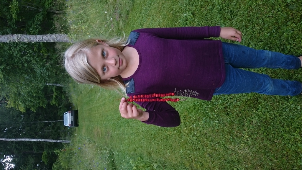 Alice picked her first wildstrawberries.