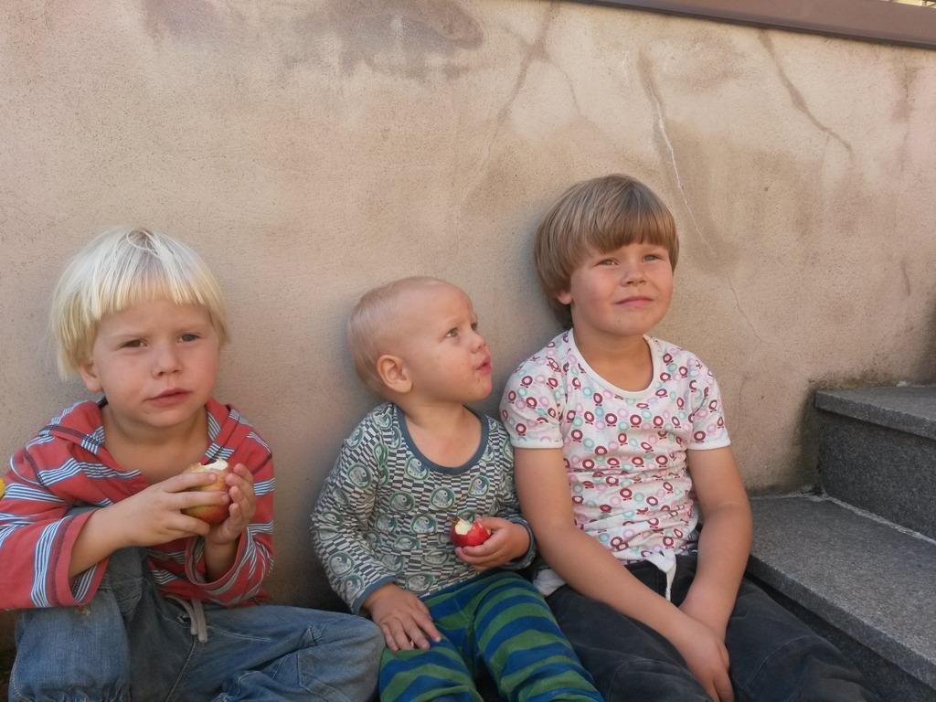 Otto, Nils and Dante