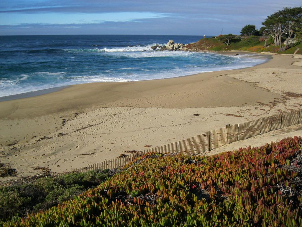 Carmel beach, 2 hour drive